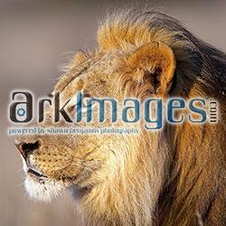 ArkImages.com