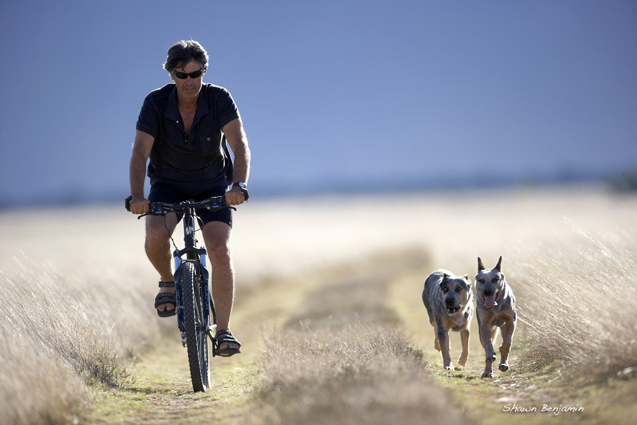 Mountain Biking South Africa (MTB SA) | Cycling with Dogs, Western Cape