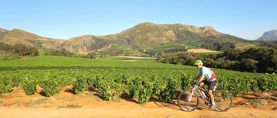 Mountain Biking South Africa (MTB SA)   Constantia/ Tokai, Cape Town Launch with Maurice Oddes