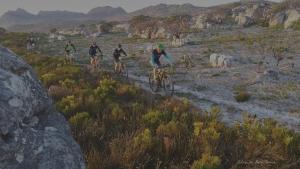 Mountain Biking South Africa (MTB SA) | Cape Town, Western Cape, RSA