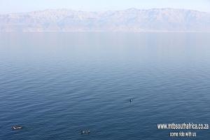 MTB South Africa (MTB SA) | Mountain-Biking-South-Africa-MTB-SA-Israel-Group-Dead-Sea-Trail