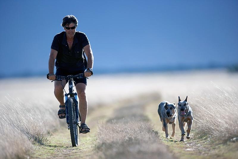 MTB South Africa (MTB SA)   Marrick Safari Cycle Trails / Tracks
